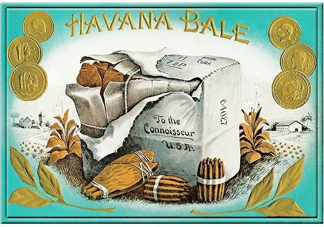 HAVANA BALE * 8'' x 11'' 10154