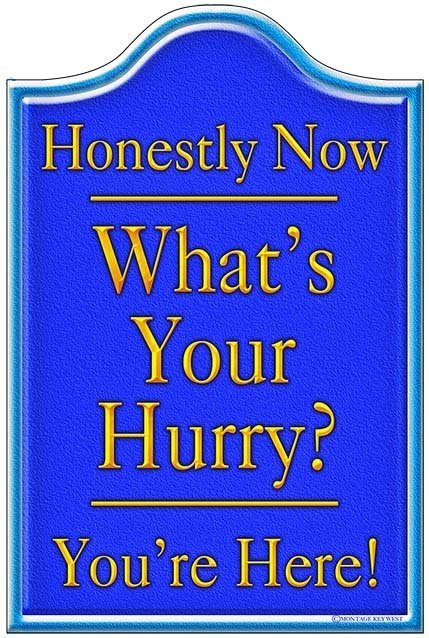 HONESTLY NOW BLUE * 6'' x 11''