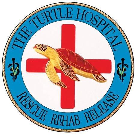 TURTLE HOSPITAL ROUND * 8'' x 8'' 10540