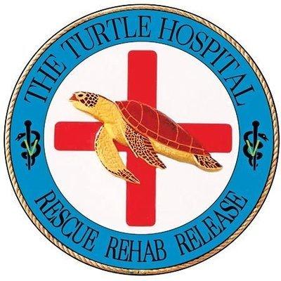 TURTLE HOSPITAL ROUND * 8'' x 8''