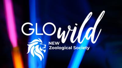 GloWild Adult Registration NO T-SHIRT