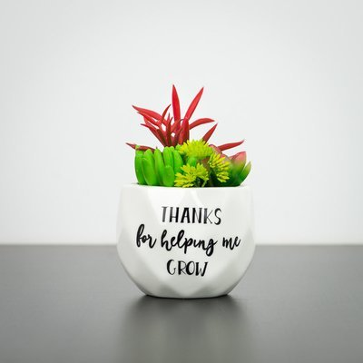 Succulent - Thanks For Helping Me Grow