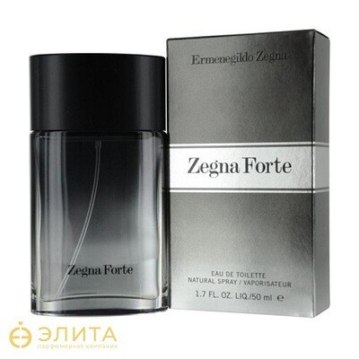 Ermenegildo Zegna Forte Man - 100 ml