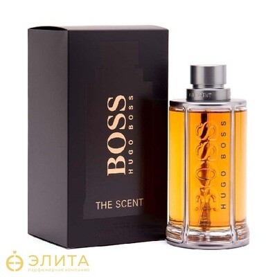 Hugo Boss The Scent Man - 100 ml