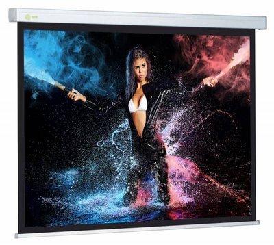 Экран Wallscreen CS-PSW-180x180 100