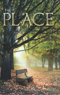 The Place - 365-day daily devotional with nuggets