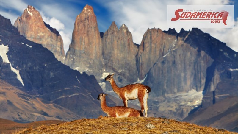 CHILI - CHILI, DU NORD A L'EXTRÊME SUD - 15 JOURS / 12 NUITS - CIRCUIT 2021