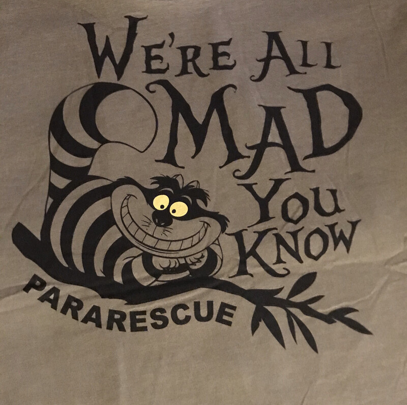 pja/ T-Shirt - We're All Mad You Know!