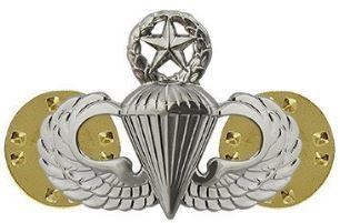 bdg/ Badge Master Parachutist Wings - Mirror Finish (Mini Badge)
