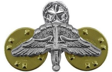 bdg/ Badge Master HALO Wings - Mirror Finish (Mini-Badge)