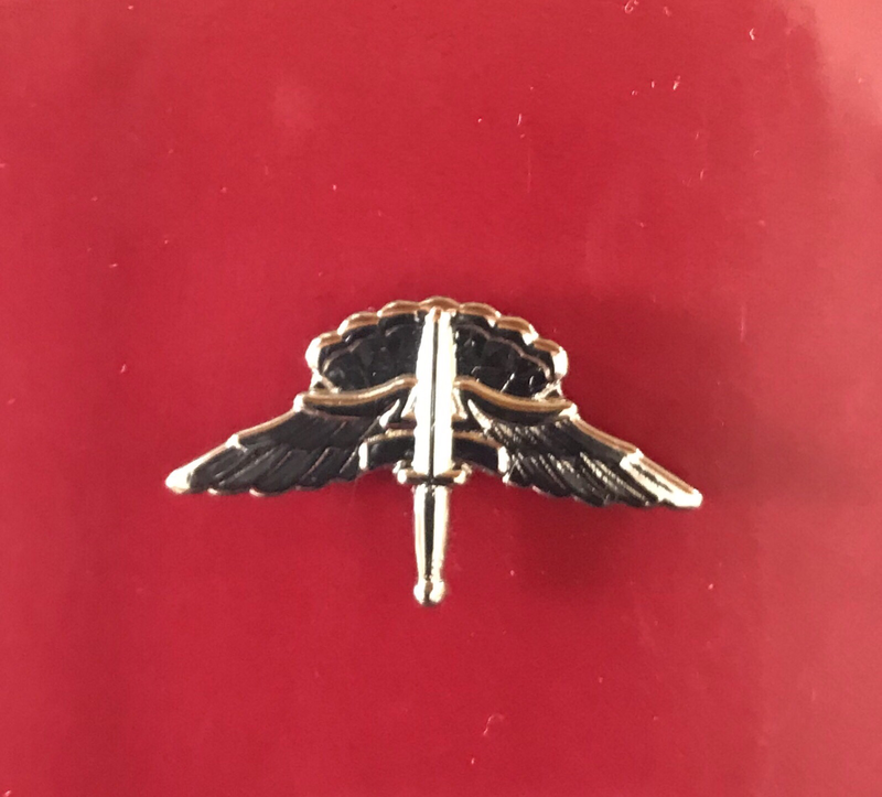bdg/ Badge Freefall Jump Wings - Mirror Finish (Mini-Badge)
