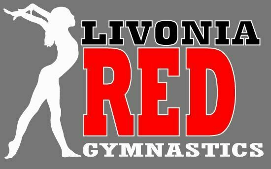 """Livonia Red Car Decal - 8"""" wide"""