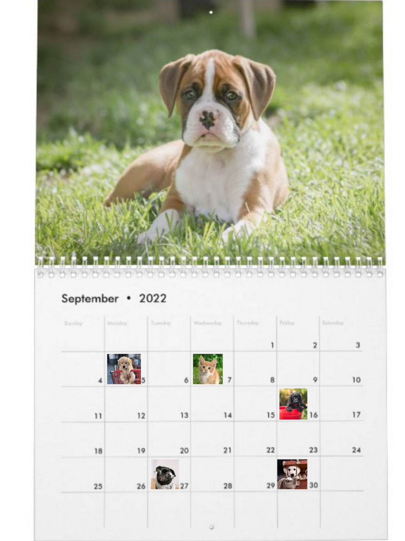 2022 Calendar Photo Fundraiser