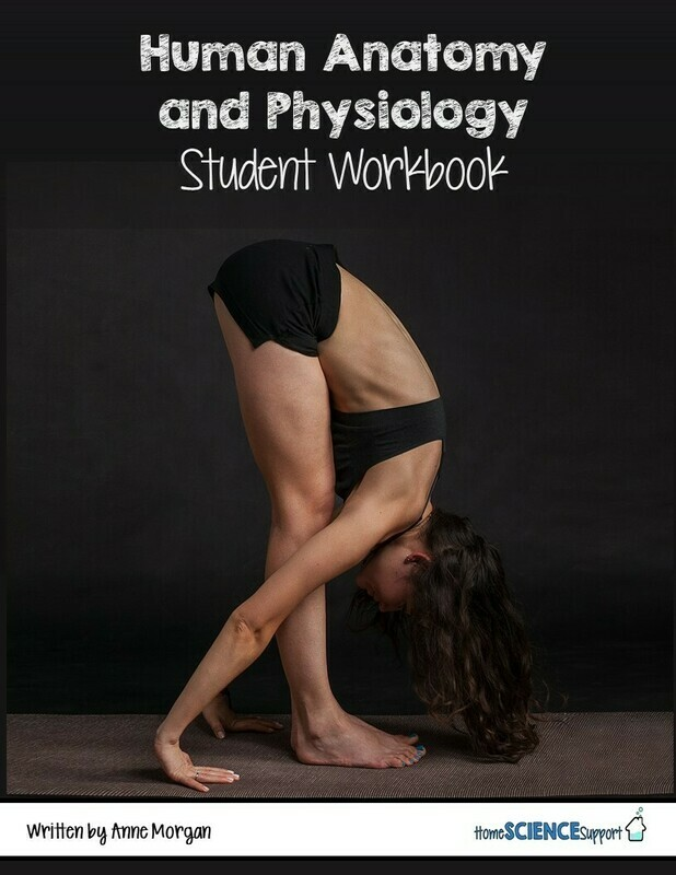 Human Anatomy & Physiology Student Workbook
