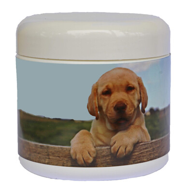 GT Performer Canine 250g