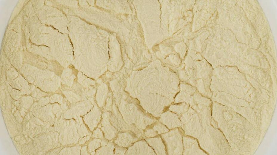 Spraymalt (Dried Malt Extract)