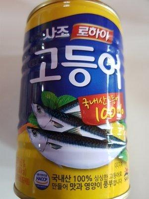 Ikan kembung kaleng 고등어