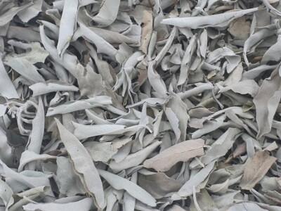 Witte Salie losse bladeren zakje 50 gr