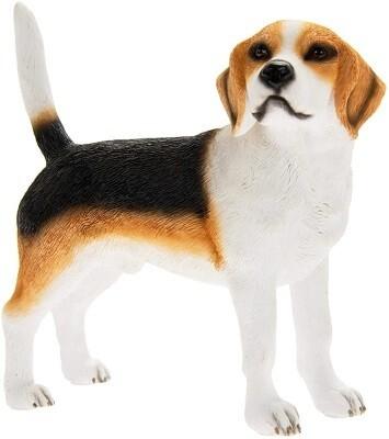 Beagle 12 cm