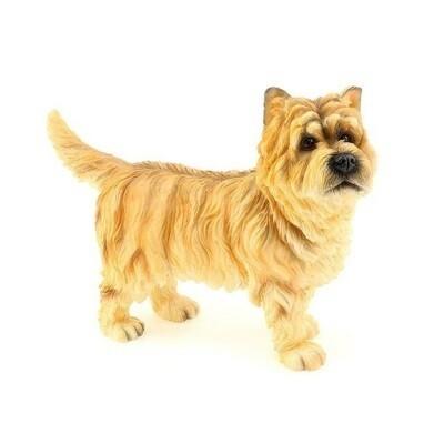 Cairn Terrier 12 cm