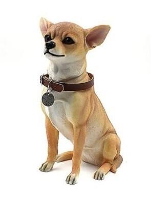 Chihuahua 27 cm