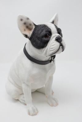 Franse Bulldog 27 cm