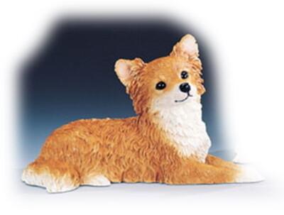 Chihuahua 20.5 cm