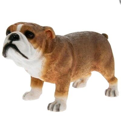 Bull Dog 13 x 4 x 12 cm