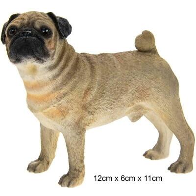 Beeld Pug  - Mops -  12 cm