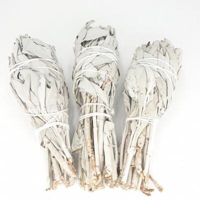 Witte Salie Smudge 3 x 15-20 gr in zakje