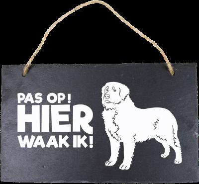 Berner Sennenhond Leisteen 15 x 15 cm