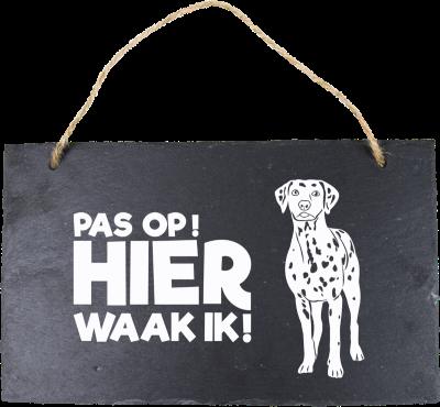 Dalmatier Leisteen 15 x 15 cm