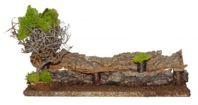 Dubbele boompjes met muur 13 cm
