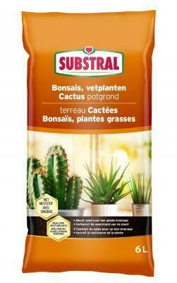 Substral cactus bonsai & vetplanten potgrond