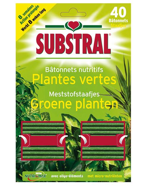 Substral meststofstaafjes voor groene planten