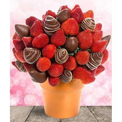 Strawberry Delight Blossom