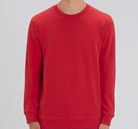 FTT - Sweatshirt (Grey)