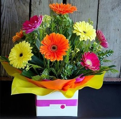 Large Mixed Gerbera Arrangement