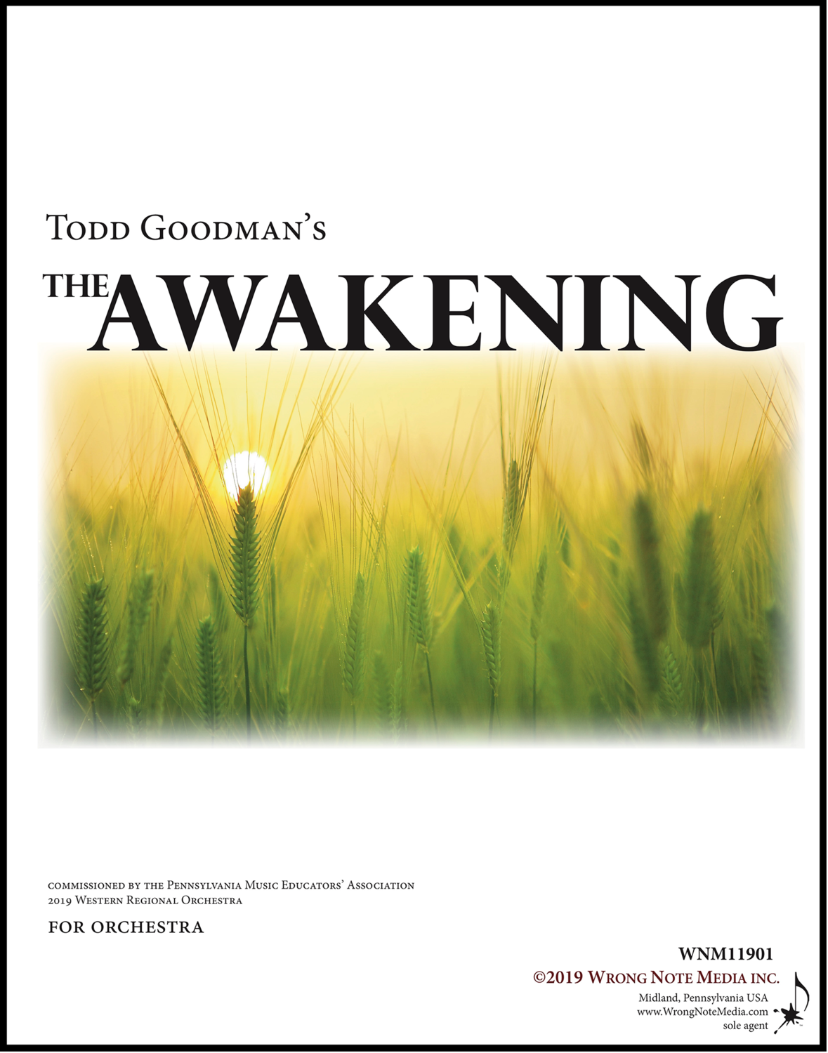 The Awakening - orchestra SCORE, by Todd Goodman