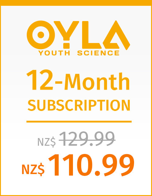 12-month PRINT Subscription