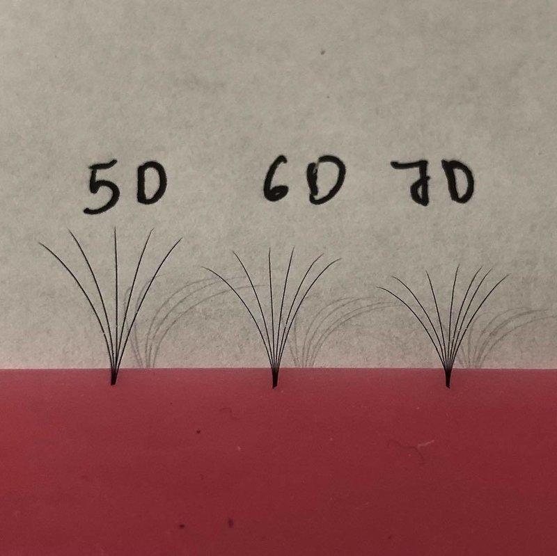 pre hand fans ( A Box of 500 Fans) 5D D curl 10mm 0.05