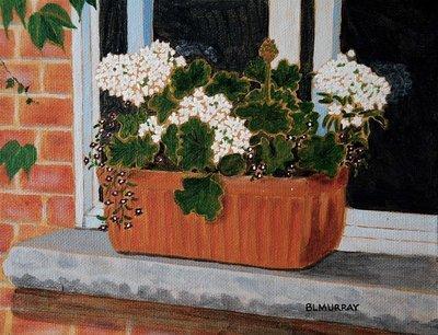 The White Verbena Windowbox