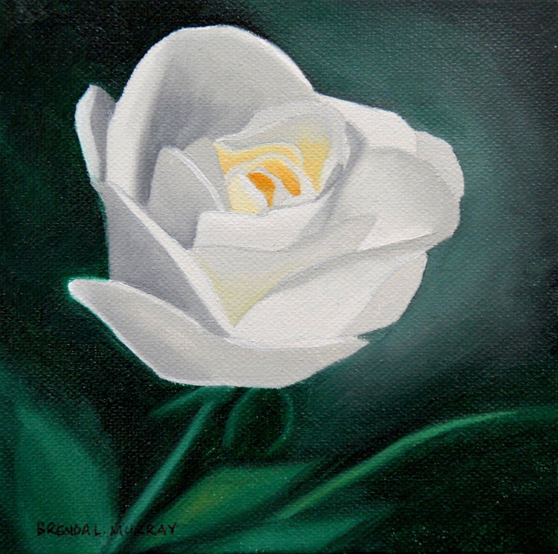 White Roses IV