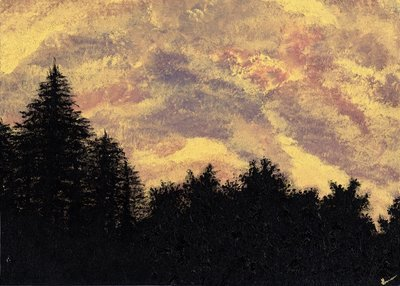 """""""Golden Sunset Pines"""" -  Signed 14"""" x 11"""" Print"""