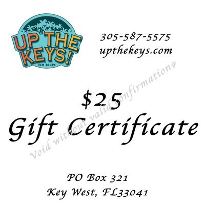 $25 Gift Certificate for $20