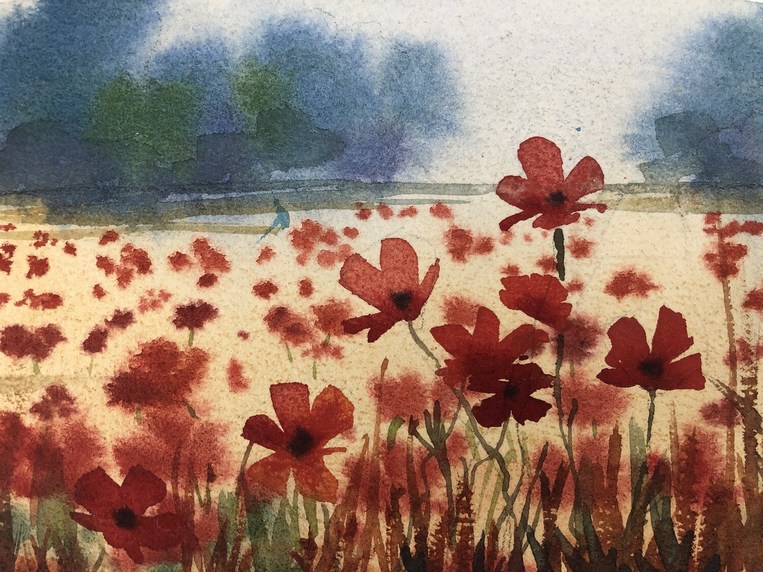 Field of Poppies  - Video tutorial -  25 minutes - easy