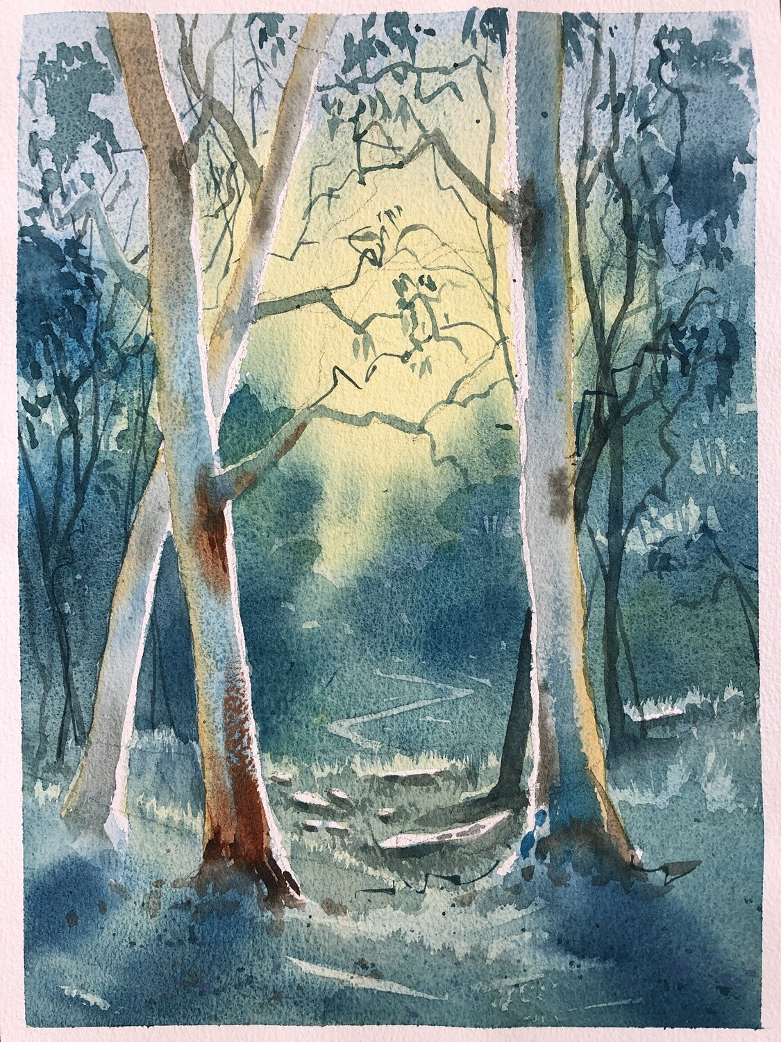 Into the light   - Australian Gum Trees watercolour Video tutorial -  2 hrs. - Med/Hard.