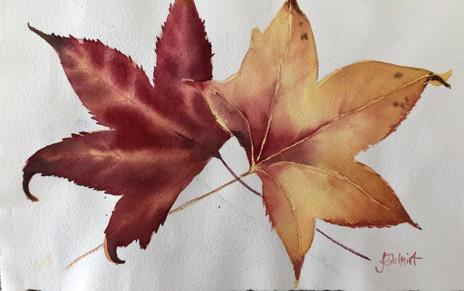 PAINTING for Sale: Red and Gold - Medium Small - 1/8th sheet original watercolour by Jenny Gilchrist
