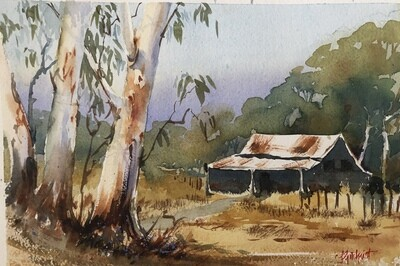 PAINTING for Sale: Aussie Bush shack - Medium Small - 1/8th sheet original watercolour by Jenny Gilchrist