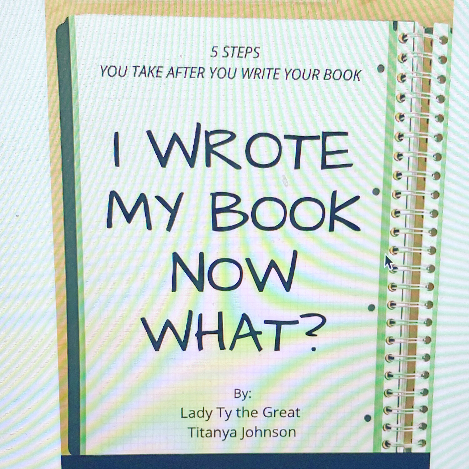 I Wrote My Book Now What